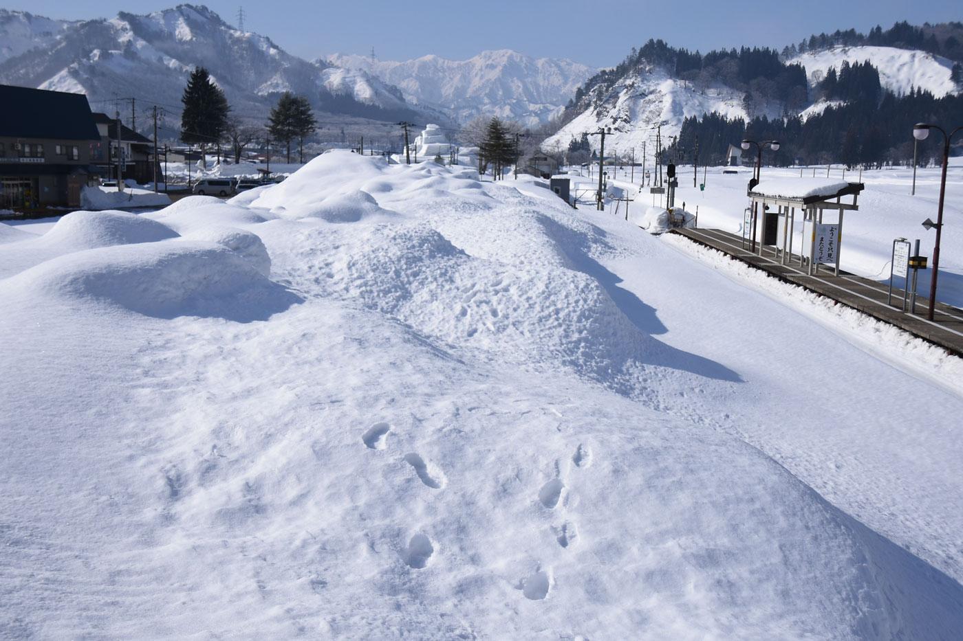 かた雪わたり